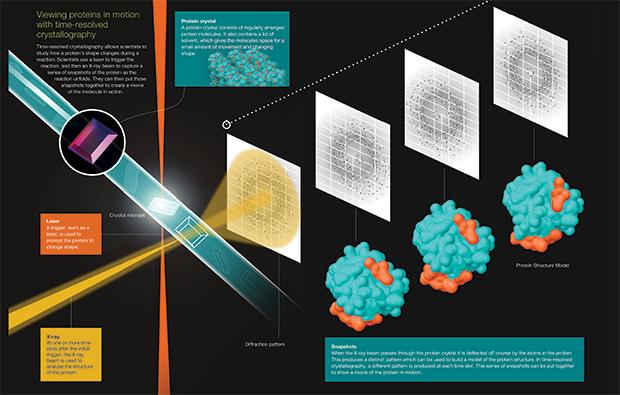 Time-resolved-crystallogrpahy-EMBLetc